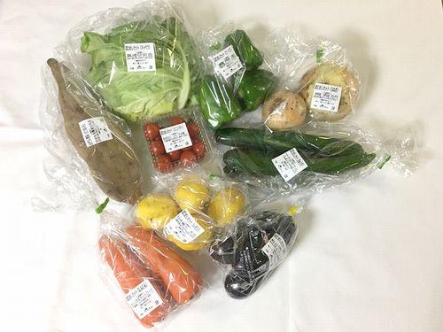 らでぃっしゅぼーや野菜たち